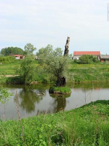 vasilyevskoe_6