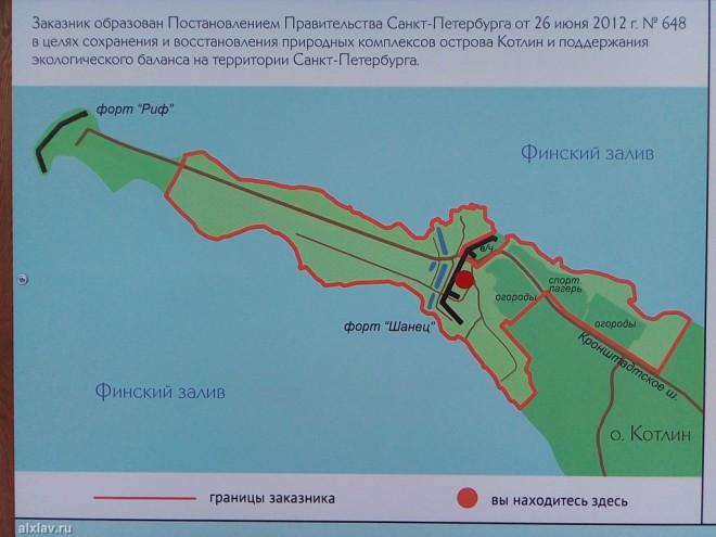 sankt-peterburg_novyj_god_2017_67