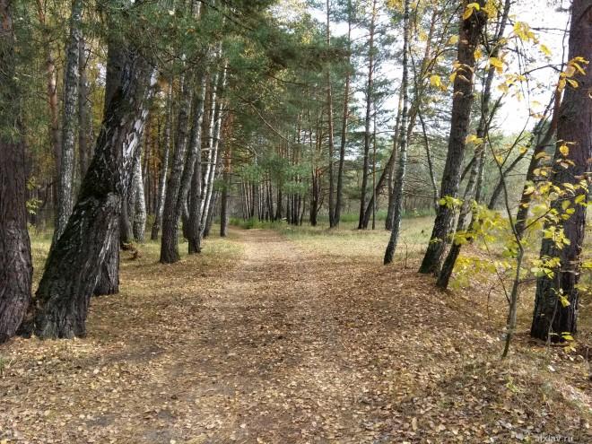 Большая дорога Боровск-Серпухов