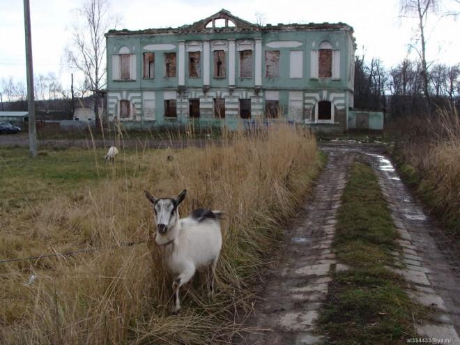 o_rode_Novosilcevih_1