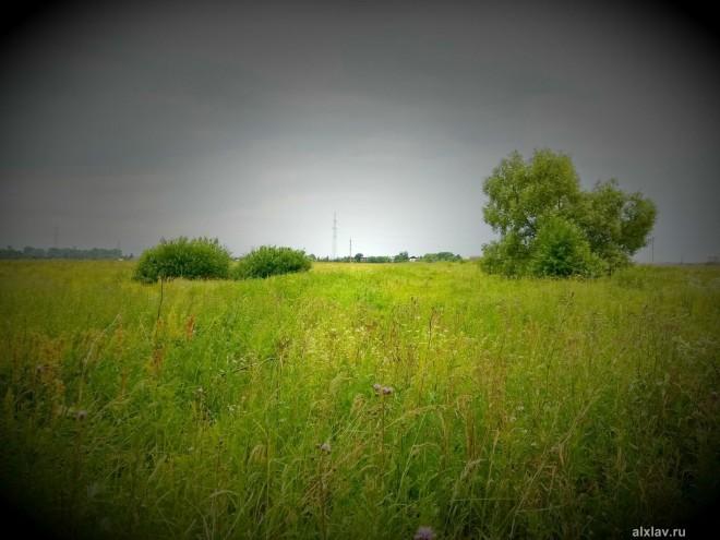 Сохранившийся участок древней Большой Ордынской дороги